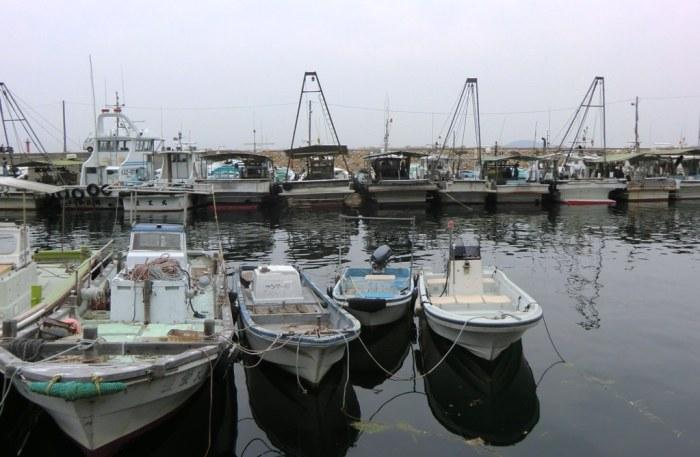 Ibukijima in June - 02
