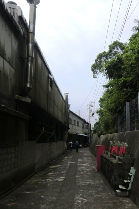 Ibukijima in June - 13