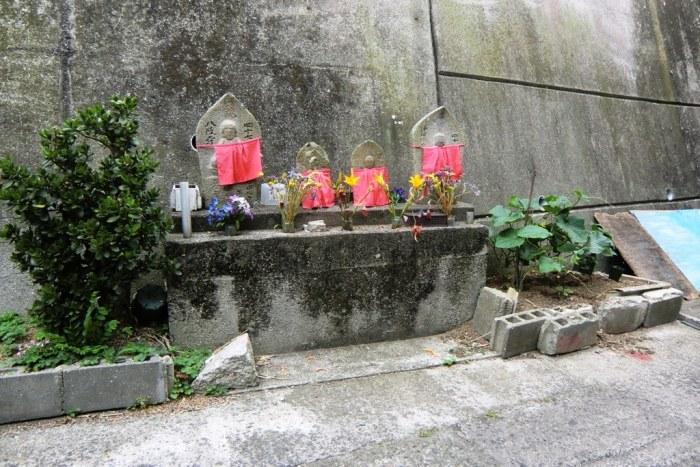 Ibukijima in June - 14