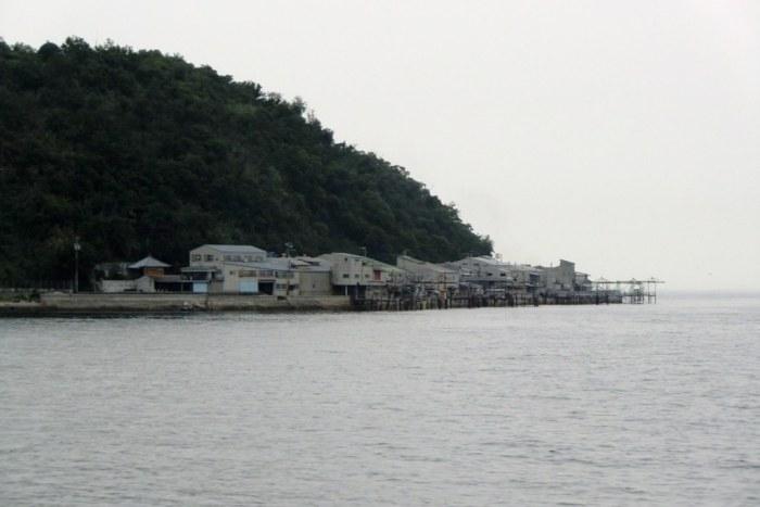Ibukijima in June - 24