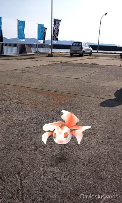Pokémon Fish on Ogijima