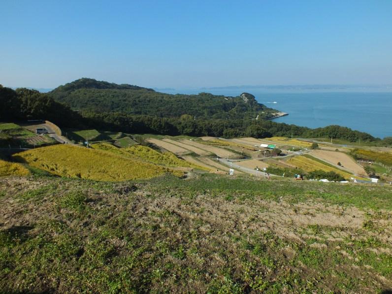 Harvest Festival and Seppuku Pistols on Teshima - 12