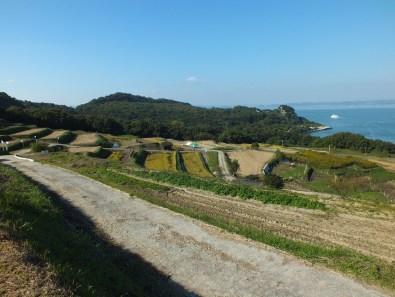 Harvest Festival and Seppuku Pistols on Teshima - 7