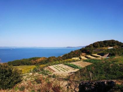 Teshima - November 2018 - 10 - Teshima Tanada Project