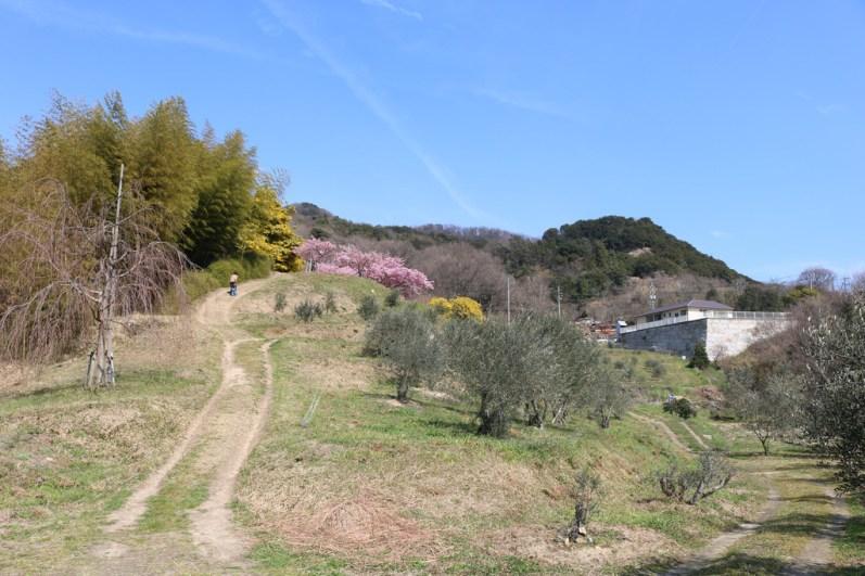 Shodoshima - 2019-03-05 - 29