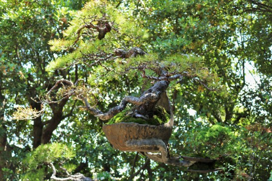 Setouchi Triennale 2019 – Part Seven – Megijima - 42