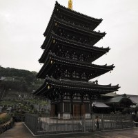 Honen-ji Pagoda on a rainy day