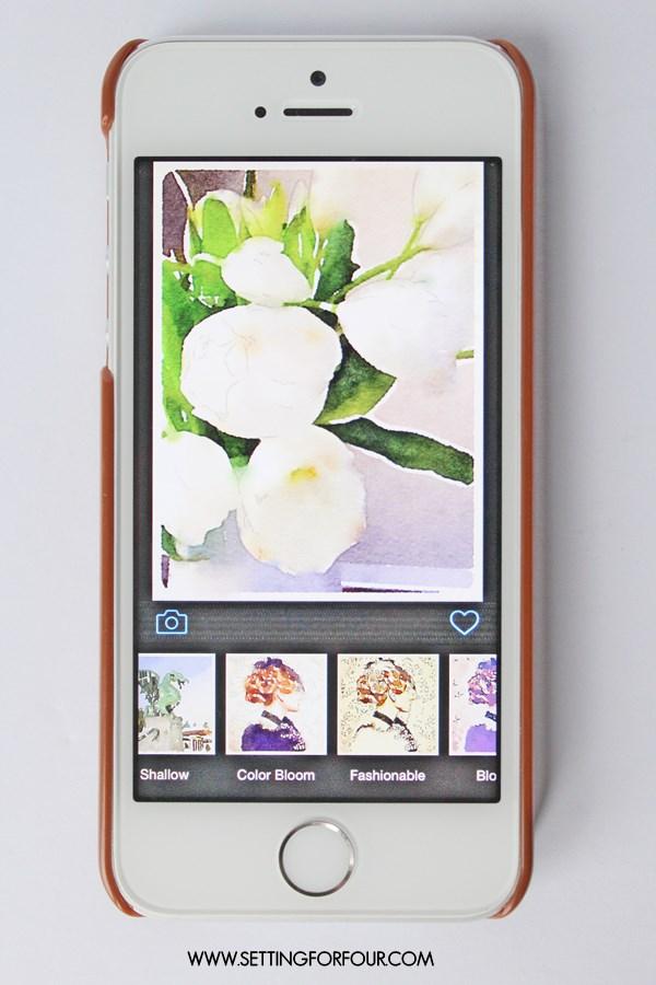 Image in Waterlogue App