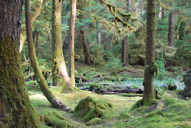 Nature Destinations in BC