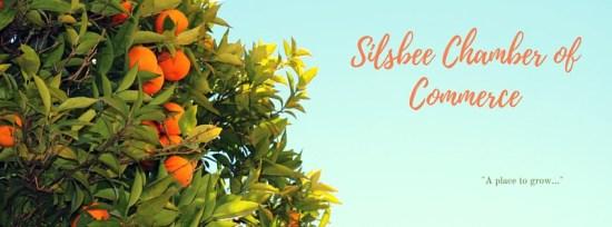 Silsbee Chamber of Commerce, Silsbee Chamber networking event, Silsbee Chamber events, Silsbee Chamber mixer