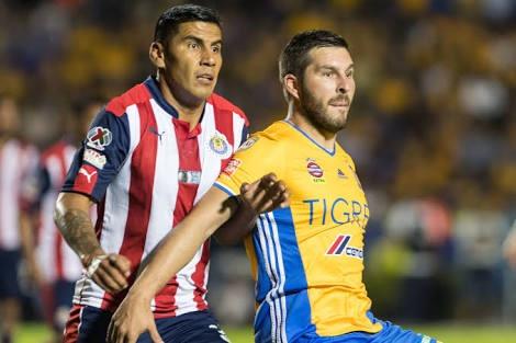 Guadalajara Vs Tigres juegan el Campeón de Campeones