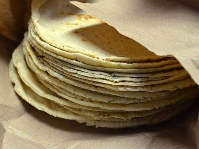 1024px-tortillas_de_maiz_blanco_xmxxicox_01_jpg_423682103.jpg_539665225