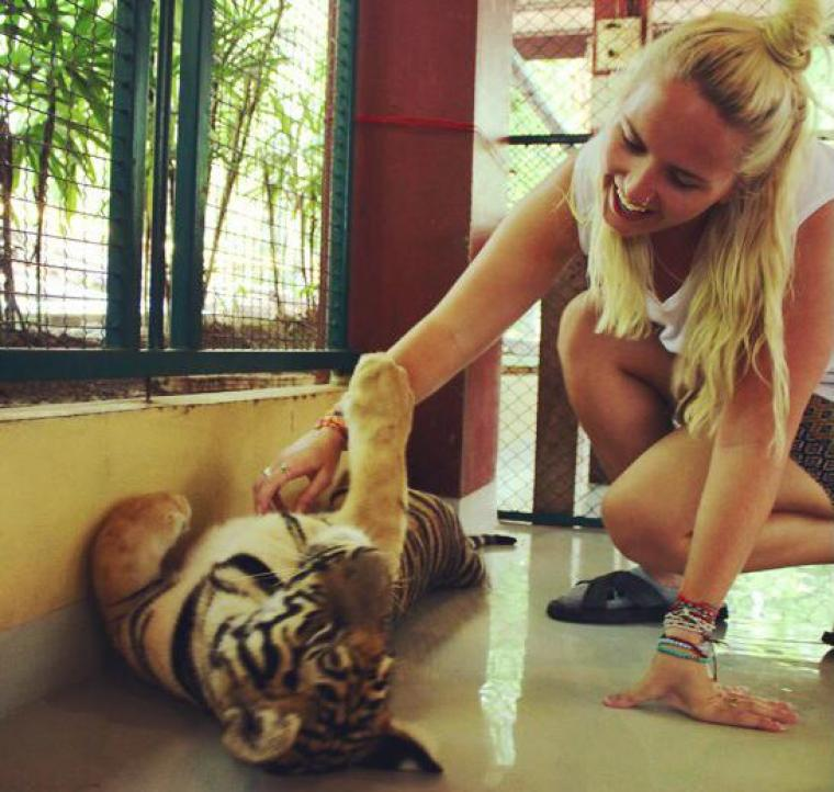 The Controversial Tiger Tourism of Thailand
