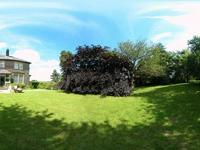 Sevenford House & Gardens