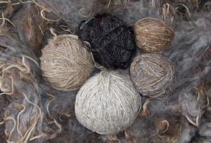 Warm, durable wool