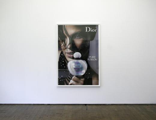 Dolphin Dior