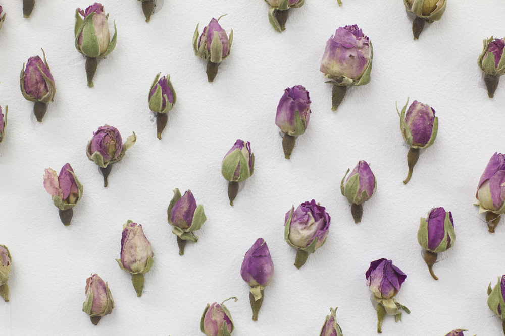 AirBNB Flowers 2 WEB