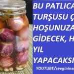 Patlıcan Turşusu