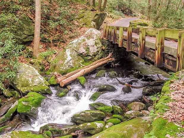 One of the Eight Roaring Fork Motor Nature Trail Bridges