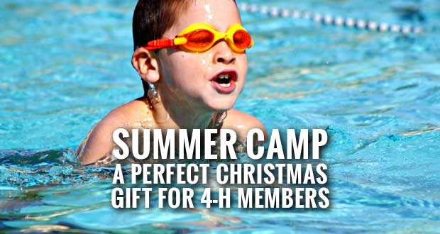 4-H Summer Camp a great Christmas gift for Sevier County 4-H members.
