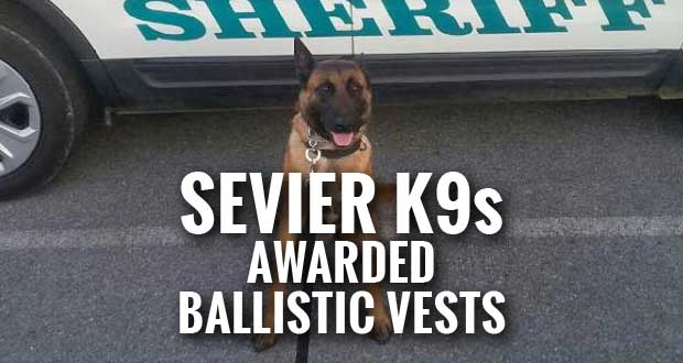 Sevier County Sheriff's K9s Get Ballistic Vests