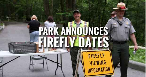 Great Smoky Mountains National Park Announces Synchronous Firefly Viewing Event Dates