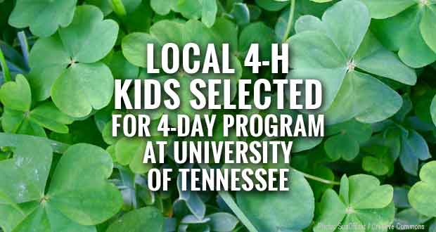 Sevier 4-H Members to Attend State Junior High 4-H Academic Conference