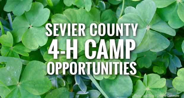 4-H Camp Opportunities Still Available