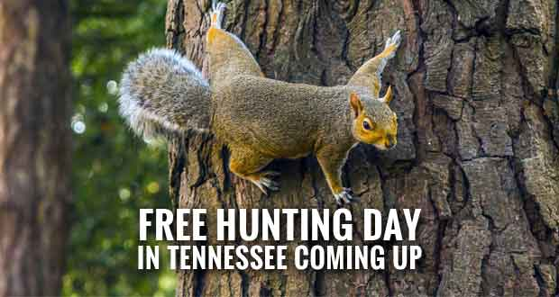 No Hunting License Needed on Tennessee's Free Hunting Day
