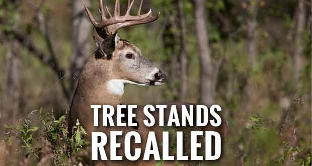 Hunters Face Fall Risk from Thousands of Recalled Tree Stands