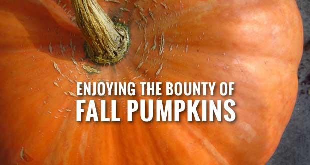 Tips for Safely Preserving Pumpkins