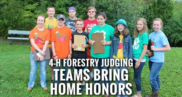 4-H Forestry Judging Teams Do Well in Regional Competition