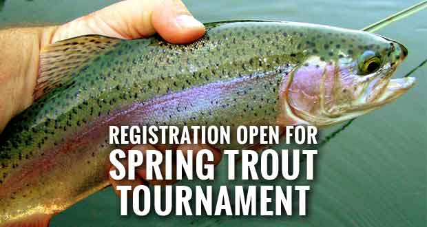 Cash and Prizes up for Grabs in Smoky Mountain Trout Tournament