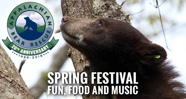 Spring Festival to Benefit Appalachian Bear Rescue
