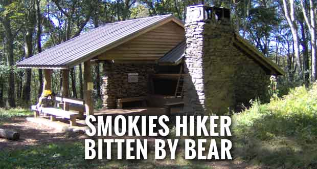 Park Closes Spence Field Backcountry Shelter after Bear Bites Hiker