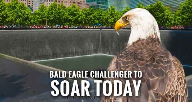 Famous Bald Eagle Challenger Honors 9/11 Victims & Heroes
