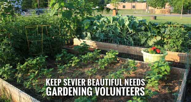 Help the Good Earth Community Garden on National Planting Day