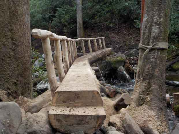Smokies Reopens Ramsey Cascades Trail after Foot Log Repair