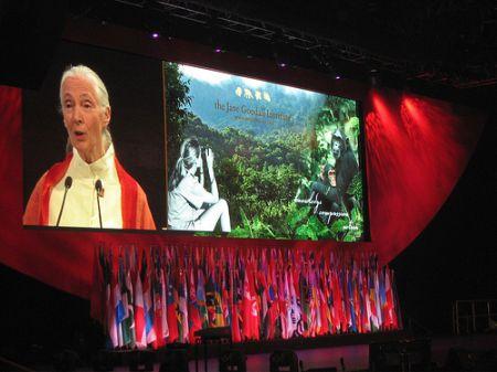Imagen del Instituo Jane Goodall/Rotary Club