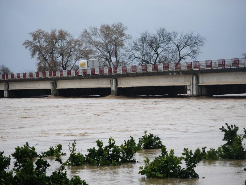 Estado del río a la altura del puente de la carretera que une Tocina con Villanueva del Río y Minas