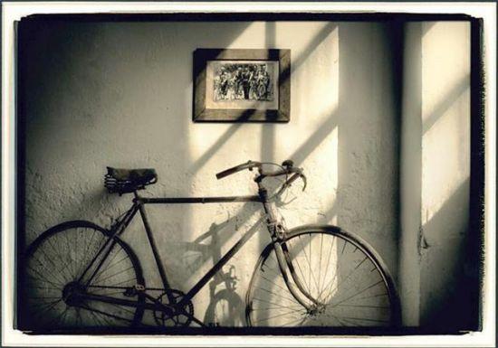 `Memorias de Ceniza`ha ganado el primer premio