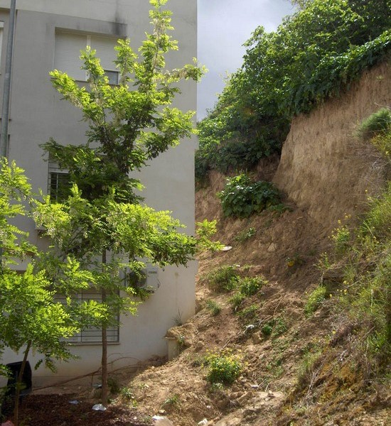 Parte trasera de una de las viviendas afectadas por el desprendimiento