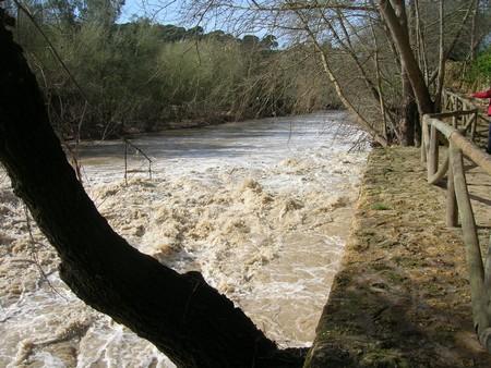 Los vertidos han sido frecuentes en el río en los últimos meses