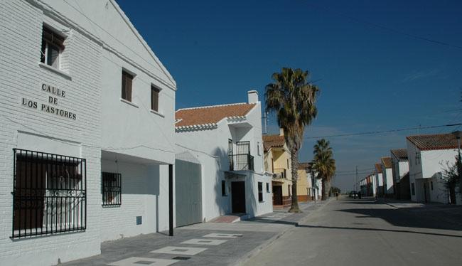 calle-pastores-el-trobal-010212