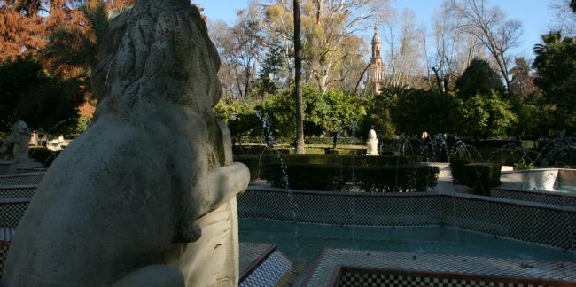 leones-parque-maria-luisa-040312-2