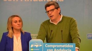 Asegura que el nuevo gobierno no va a servir para sacar a Andalucía de la crisis económica/SA