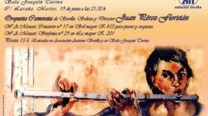 concierto-camerata-sevilla-autismo-150612