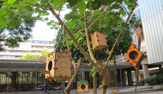 juguetes-nidos-escolares-en-laboratorio-us-201112