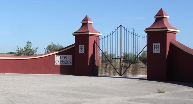 Parte de la propiedad de la familia de Mario Conde en el término municipal de Castilblanco sale a subasta el próximo miércoles / Juan C. Romero