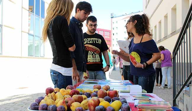 frutas-dia-alimentacion-us